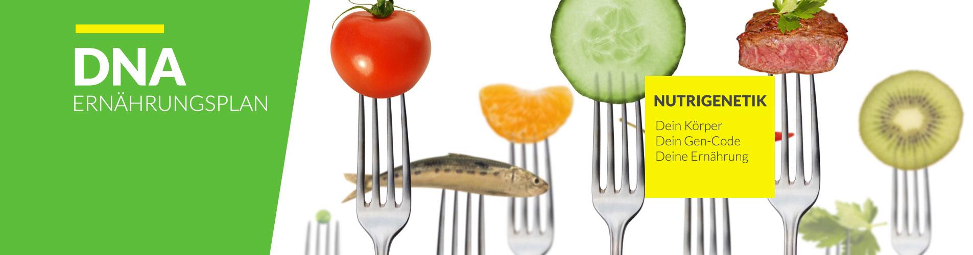 Ernährungsberatung-2