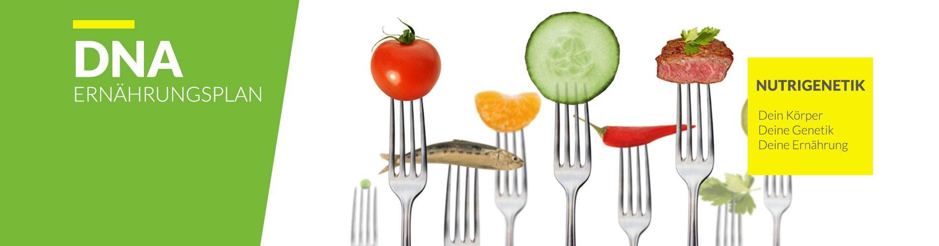 DNA-Ernährungsplan-Ernährungsberatung