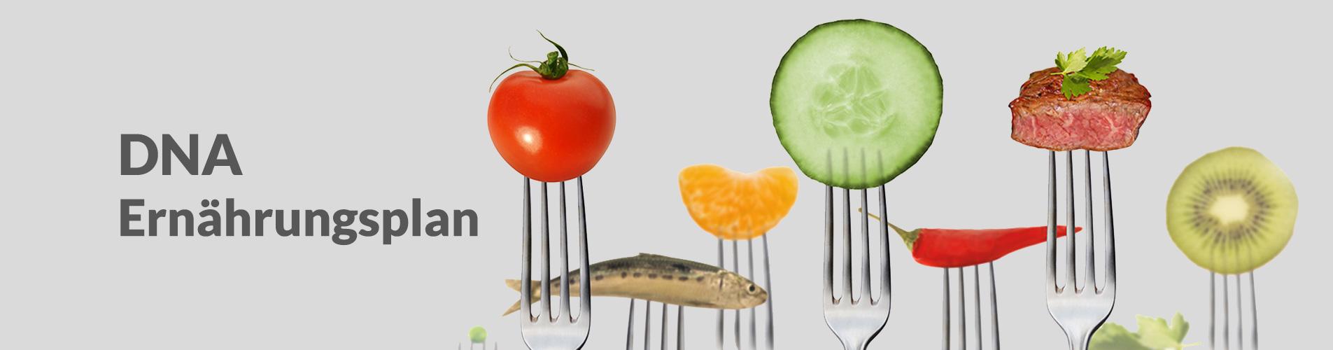Slider-DNA-Ernährungsplan2